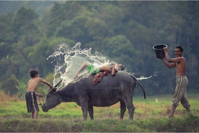 Pleasure Unbound Popular photograph
