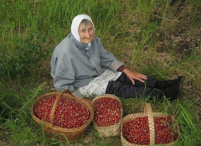 The grandmother Popular photographs