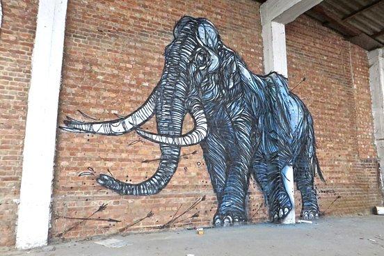 Elephant Animal Mural
