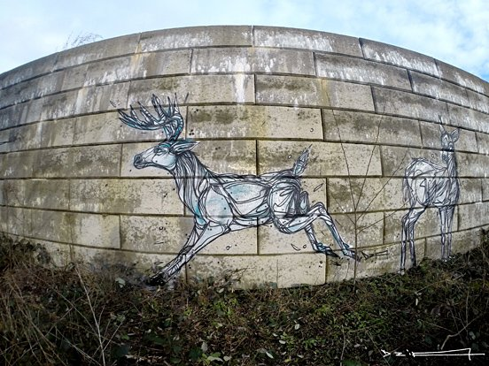 Reindeer Animal Murals
