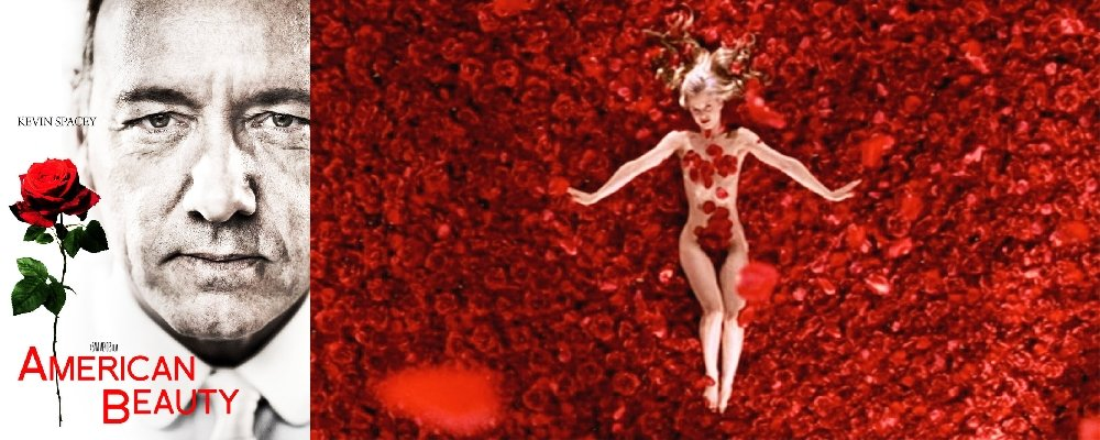 Best 100 Movies Ever 63 - American Beauty