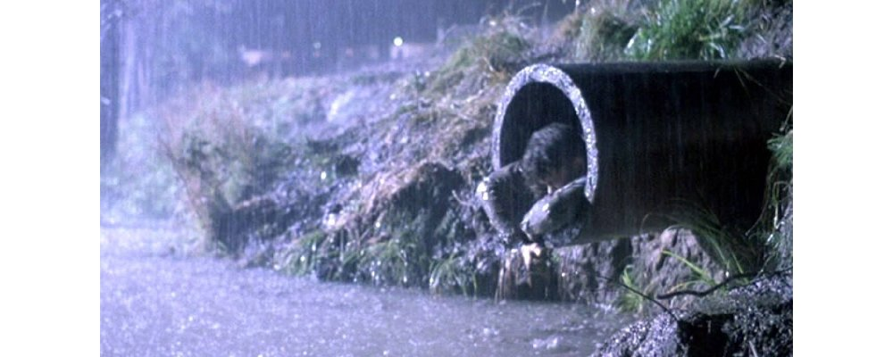 The Shawshank Redemption - Facts and Secrets 14 Sewage Escape