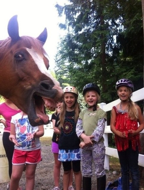 Best Animal Photobombs Ever 3a - Horse and Girls