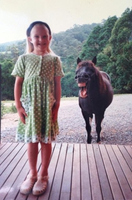 Funniest Animal Photobombs Ever 8 - Funny Horse
