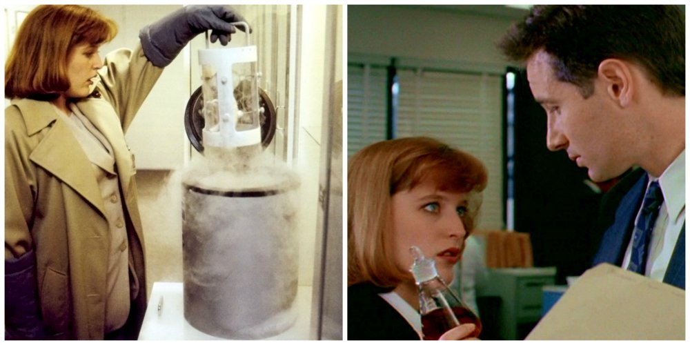 x files erlenmeyer flask