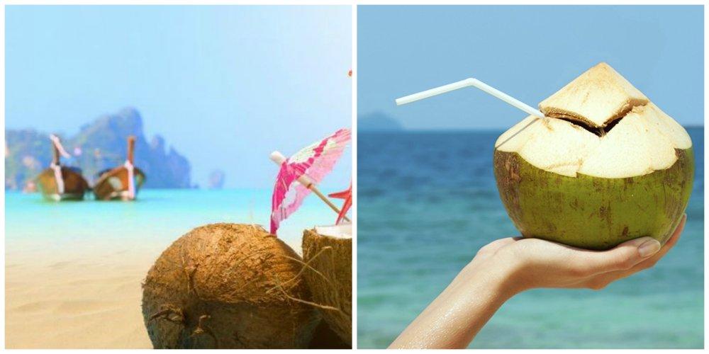 thailand coconuts