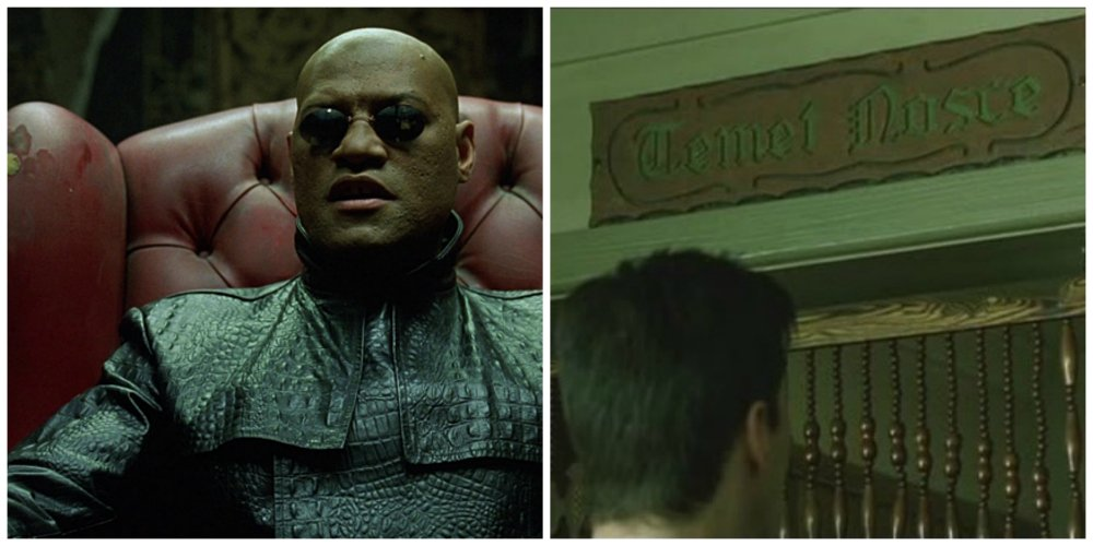 the matrix morpheus oracle