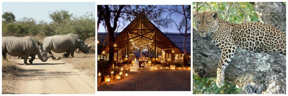 travel off the beaten track thornybush